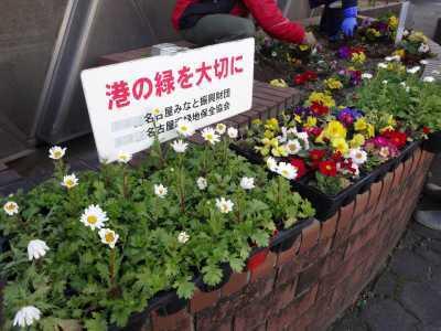 ガーデンふ頭総合案内所前花壇の植替えR3.2.18_d0338682_10185938.jpg