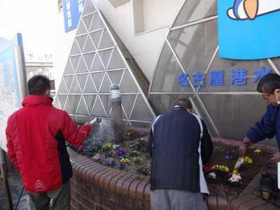 ガーデンふ頭総合案内所前花壇の植替えR3.2.18_d0338682_10200578.jpg