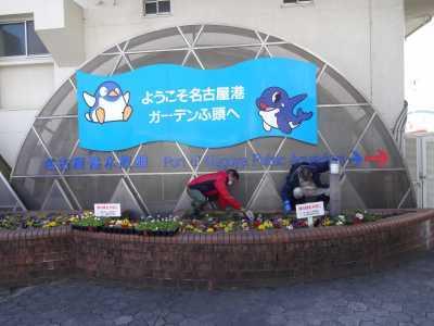 ガーデンふ頭総合案内所前花壇の植替えR3.2.18_d0338682_10202772.jpg