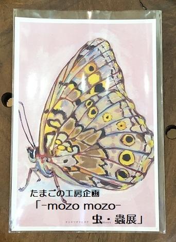たまごの工房企画「-mozo mozo- 虫・蟲展」 その7_e0134502_16291143.jpg