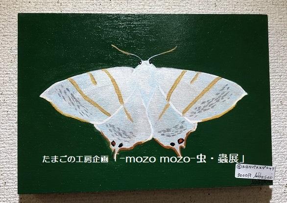たまごの工房企画「-mozo mozo- 虫・蟲展」 その7_e0134502_16291524.jpg
