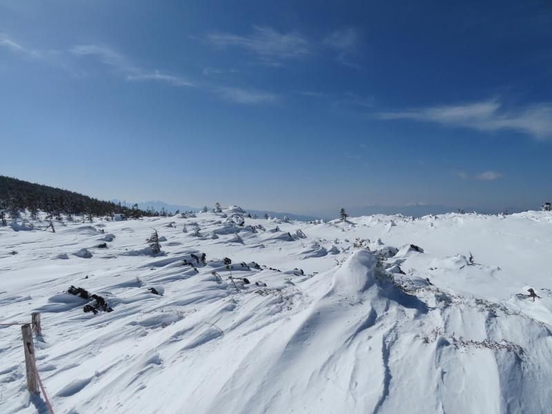 坪庭が美しい 北横岳 から  縞枯山 (2,403M) に向かう_d0170615_19512435.jpg