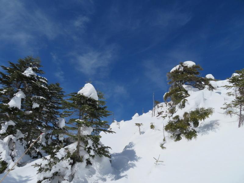 坪庭が美しい 北横岳 から  縞枯山 (2,403M) に向かう_d0170615_19513309.jpg