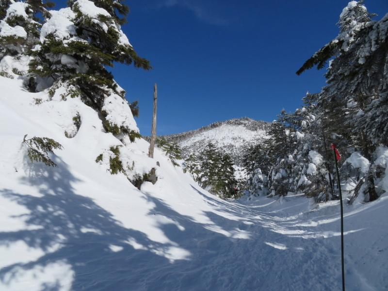 坪庭が美しい 北横岳 から  縞枯山 (2,403M) に向かう_d0170615_19514300.jpg