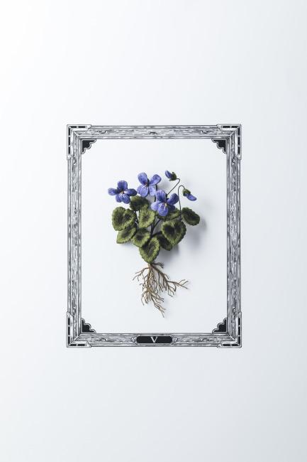 【新刊のご紹介】PieniSieniさん『立体刺繍の花と蝶々』_f0357923_12434528.jpg