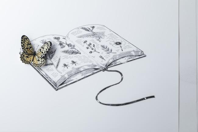 【新刊のご紹介】PieniSieniさん『立体刺繍の花と蝶々』_f0357923_12450543.jpg