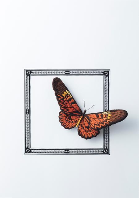 【新刊のご紹介】PieniSieniさん『立体刺繍の花と蝶々』_f0357923_13112407.jpg