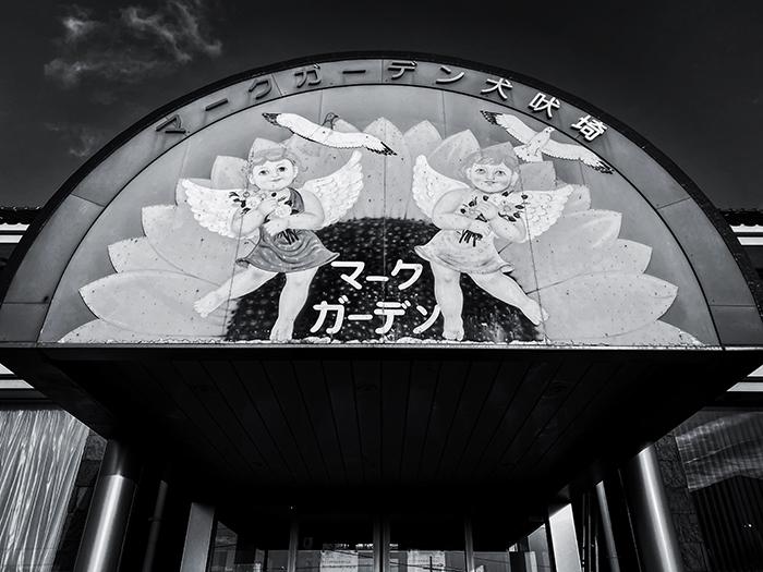 銚子市犬吠埼 / iPhone 11_c0334533_15102544.jpg