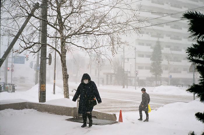 春の吹雪_c0182775_17094380.jpg