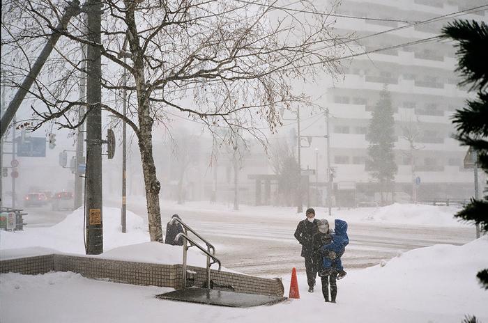 春の吹雪_c0182775_17094826.jpg