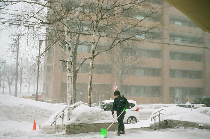 春の吹雪_c0182775_17095200.jpg