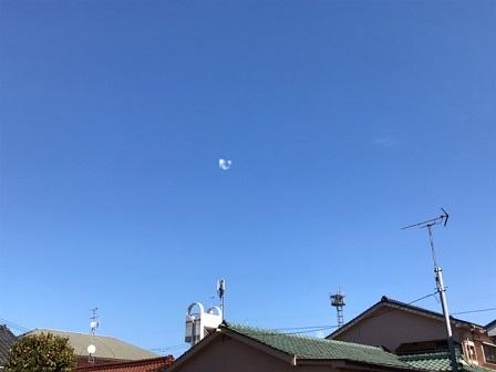 北東の空にぽつんと浮かんでいました_e0130185_22113401.jpg