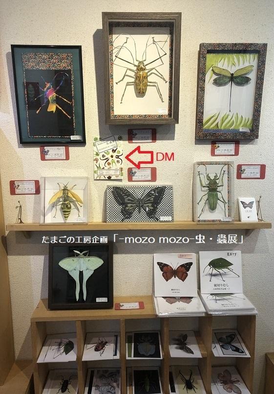 たまごの工房企画「-mozo mozo- 虫・蟲展」 その8_e0134502_19520638.jpg