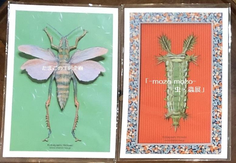 たまごの工房企画「-mozo mozo- 虫・蟲展」 その8_e0134502_19522447.jpg