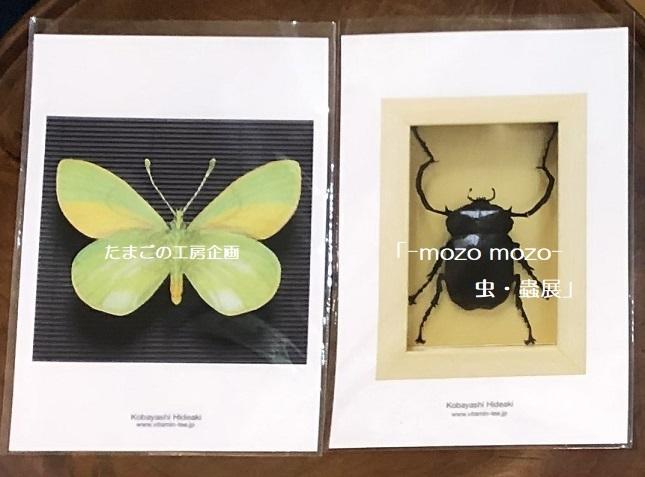 たまごの工房企画「-mozo mozo- 虫・蟲展」 その8_e0134502_19523430.jpg