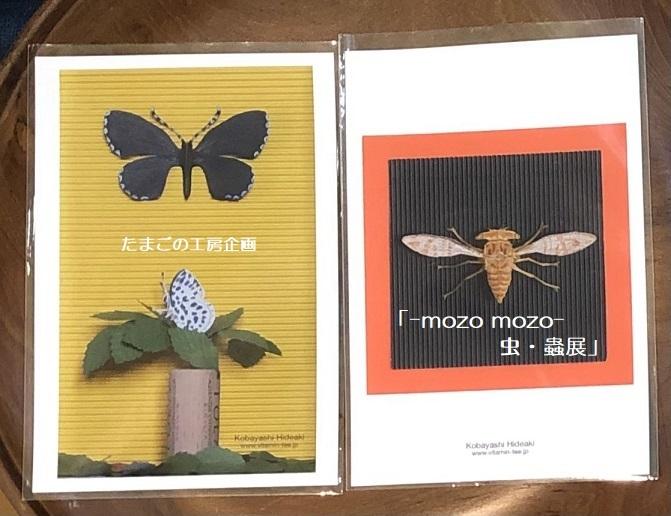 たまごの工房企画「-mozo mozo- 虫・蟲展」 その8_e0134502_19524469.jpg