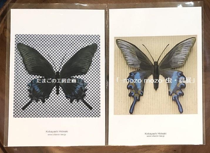 たまごの工房企画「-mozo mozo- 虫・蟲展」 その8_e0134502_19532314.jpg
