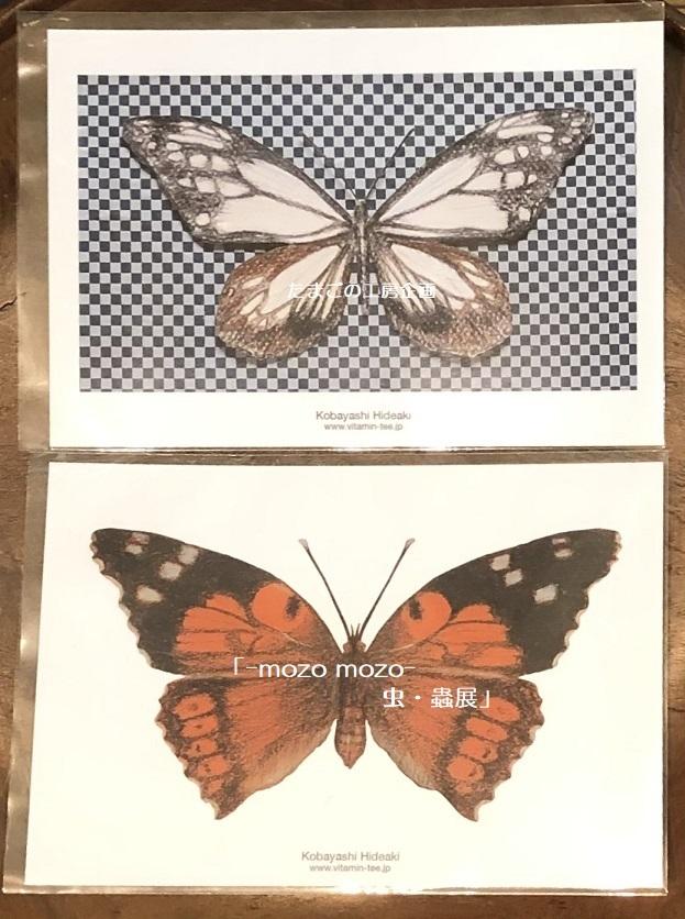 たまごの工房企画「-mozo mozo- 虫・蟲展」 その8_e0134502_19532714.jpg