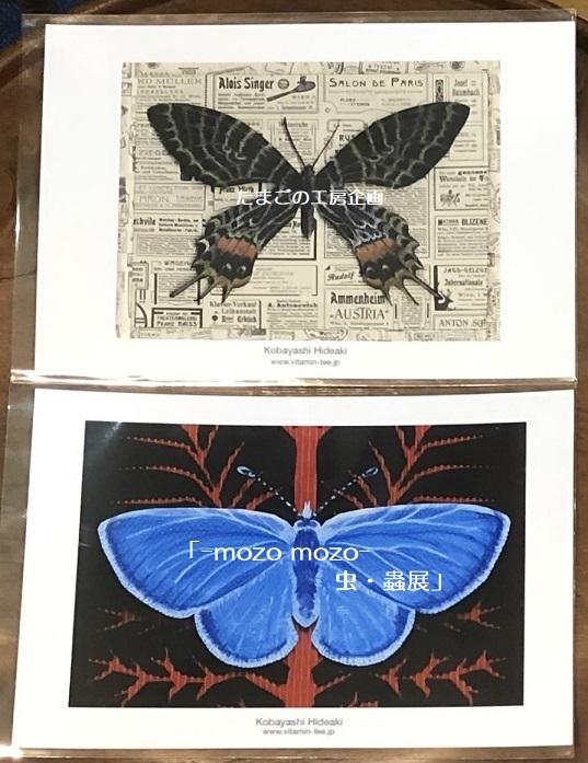 たまごの工房企画「-mozo mozo- 虫・蟲展」 その8_e0134502_19533127.jpg