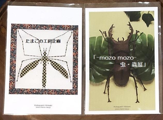 たまごの工房企画「-mozo mozo- 虫・蟲展」 その8_e0134502_19533605.jpg