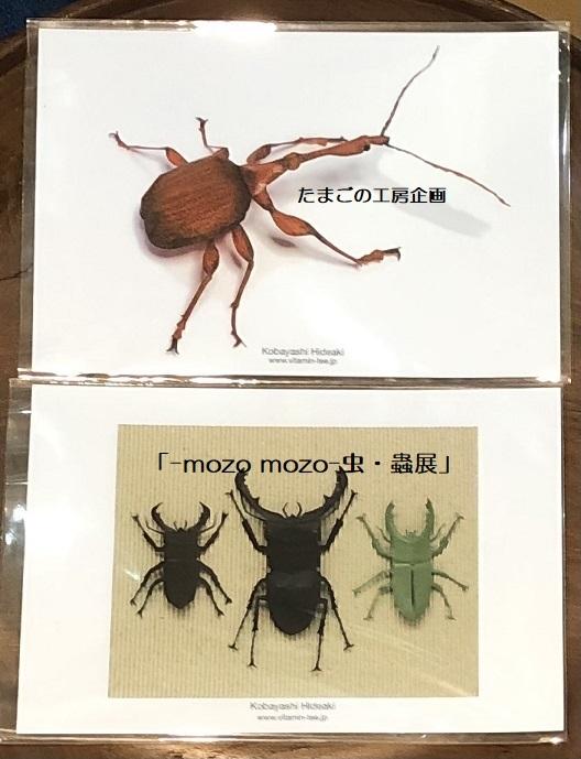 たまごの工房企画「-mozo mozo- 虫・蟲展」 その8_e0134502_19534188.jpg