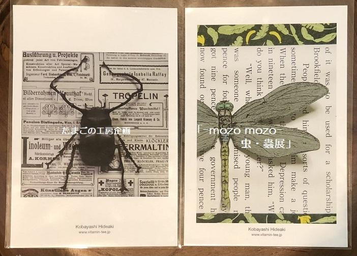 たまごの工房企画「-mozo mozo- 虫・蟲展」 その8_e0134502_19534686.jpg