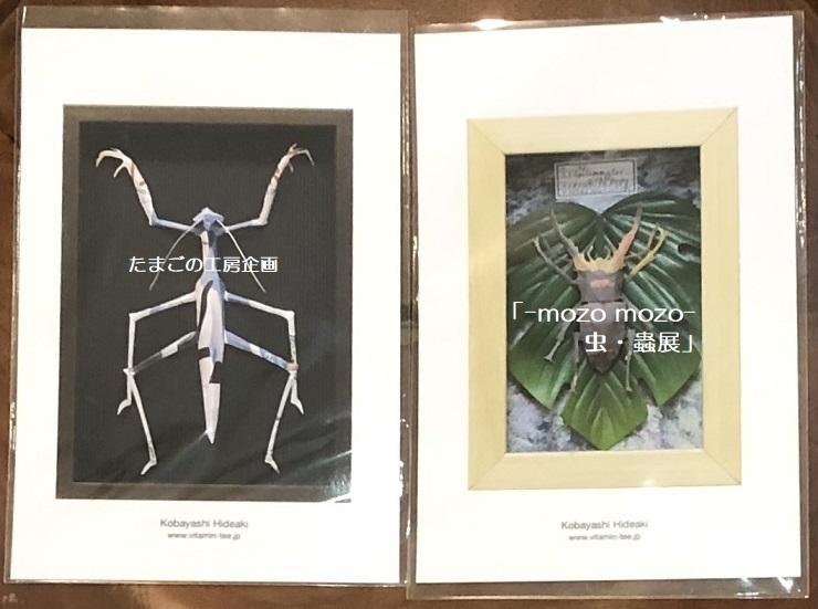 たまごの工房企画「-mozo mozo- 虫・蟲展」 その8_e0134502_19535048.jpg