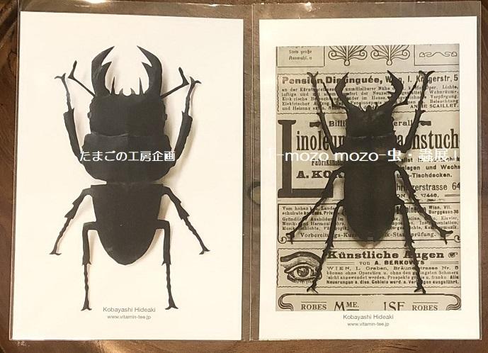 たまごの工房企画「-mozo mozo- 虫・蟲展」 その8_e0134502_19535546.jpg