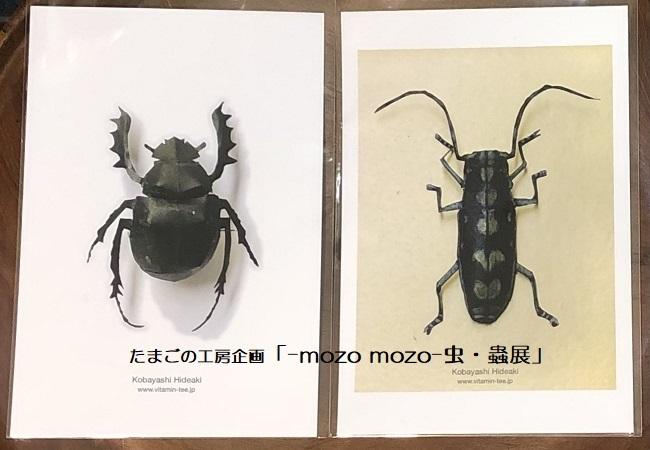たまごの工房企画「-mozo mozo- 虫・蟲展」 その8_e0134502_19540596.jpg