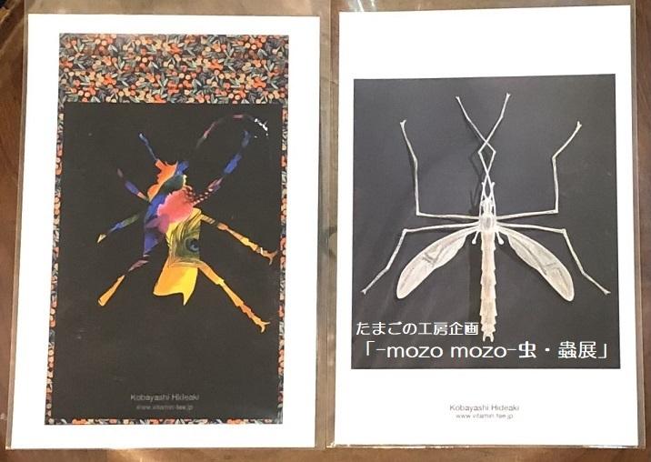 たまごの工房企画「-mozo mozo- 虫・蟲展」 その8_e0134502_19541403.jpg