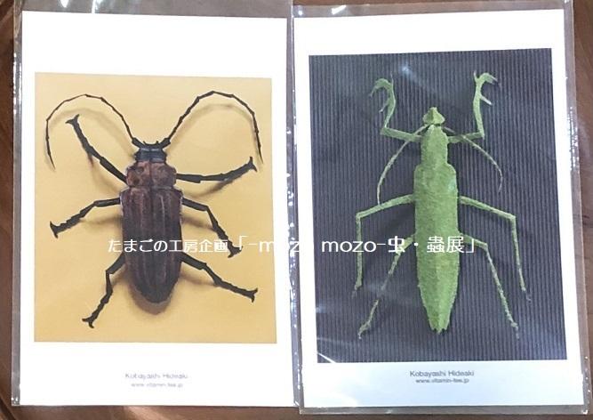 たまごの工房企画「-mozo mozo- 虫・蟲展」 その8_e0134502_19542094.jpg
