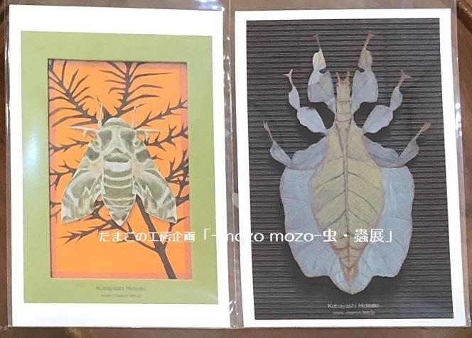 たまごの工房企画「-mozo mozo- 虫・蟲展」 その8_e0134502_19551479.jpg