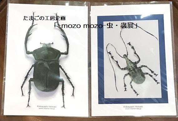 たまごの工房企画「-mozo mozo- 虫・蟲展」 その8_e0134502_19552075.jpg