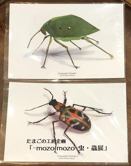 たまごの工房企画「-mozo mozo- 虫・蟲展」 その8_e0134502_19552462.jpg