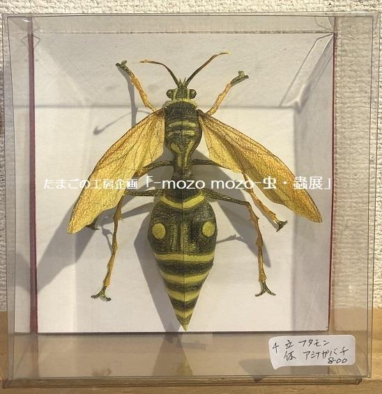たまごの工房企画「-mozo mozo- 虫・蟲展」 その8_e0134502_19554447.jpg