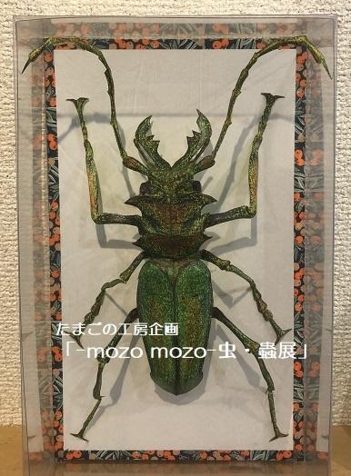 たまごの工房企画「-mozo mozo- 虫・蟲展」 その8_e0134502_19555631.jpg