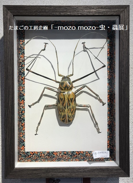 たまごの工房企画「-mozo mozo- 虫・蟲展」 その8_e0134502_19562572.jpg