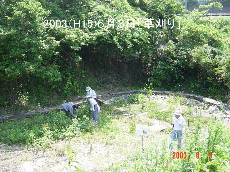 うみべの森の歴史⑬「2003年6月の活動」_c0108460_11505984.jpg