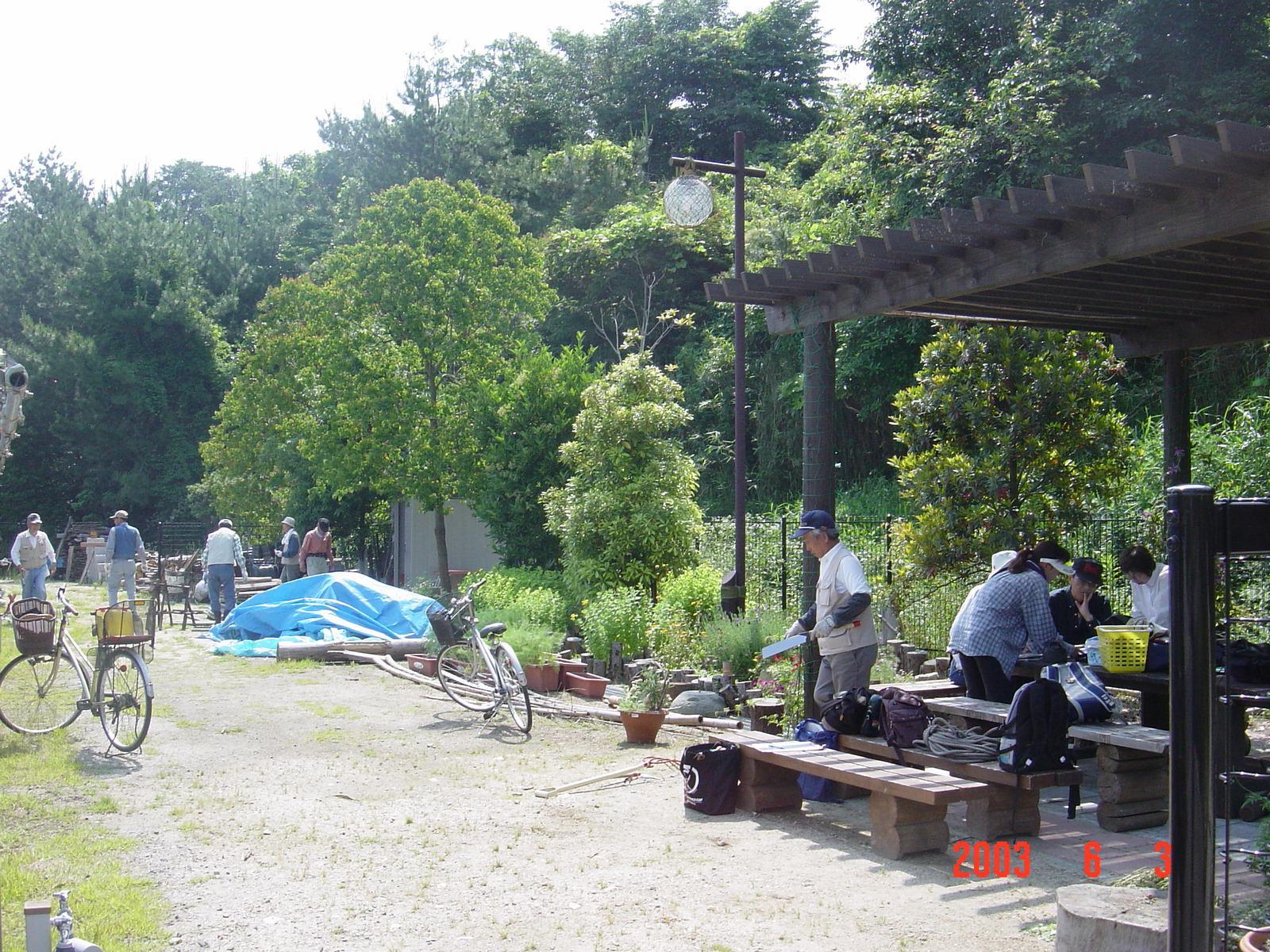 うみべの森の歴史⑬「2003年6月の活動」_c0108460_11510016.jpg