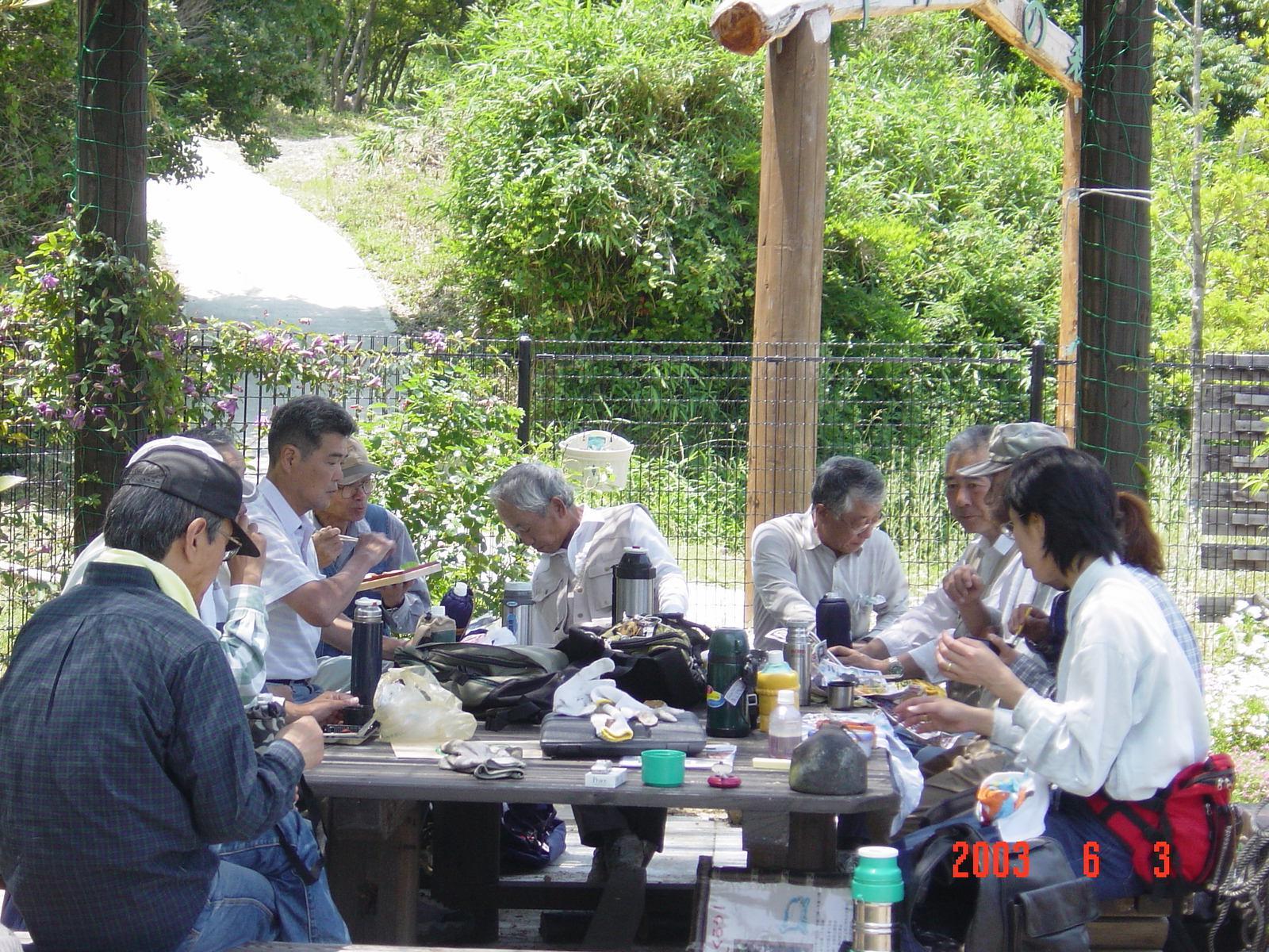うみべの森の歴史⑬「2003年6月の活動」_c0108460_11510096.jpg