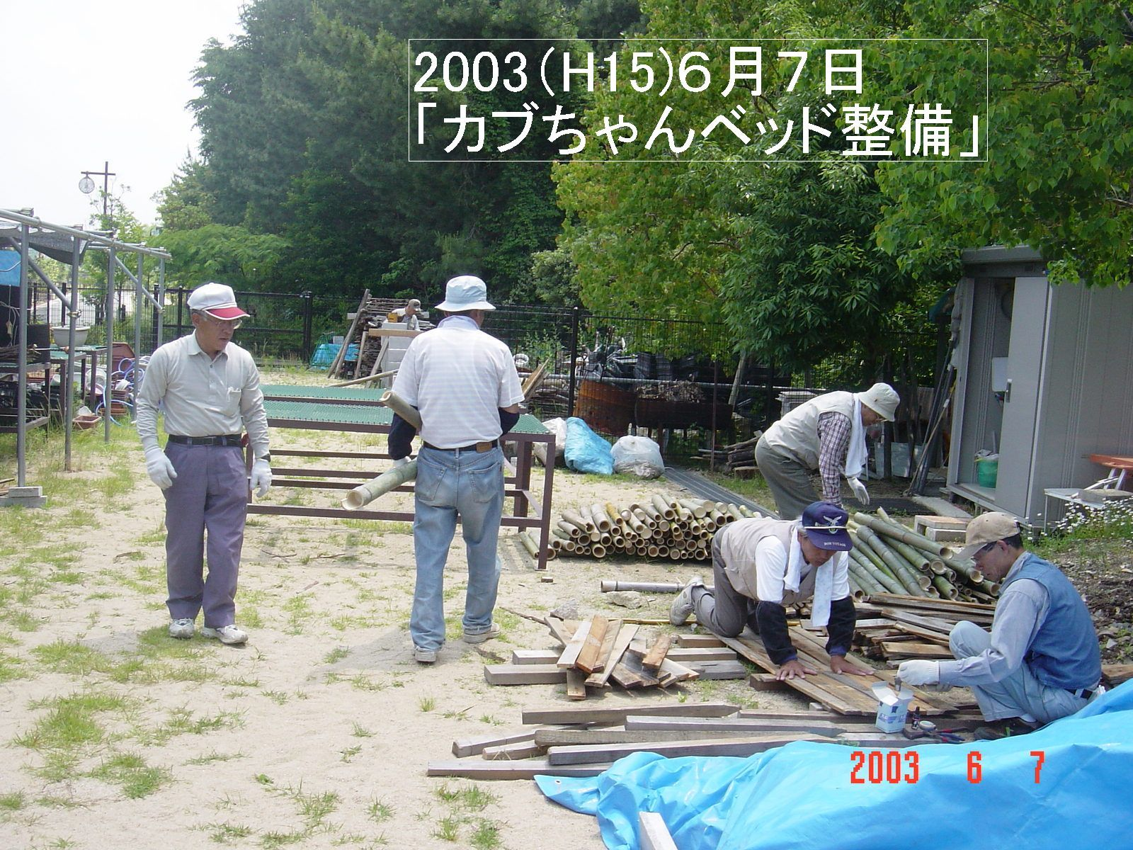 うみべの森の歴史⑬「2003年6月の活動」_c0108460_12032946.jpg