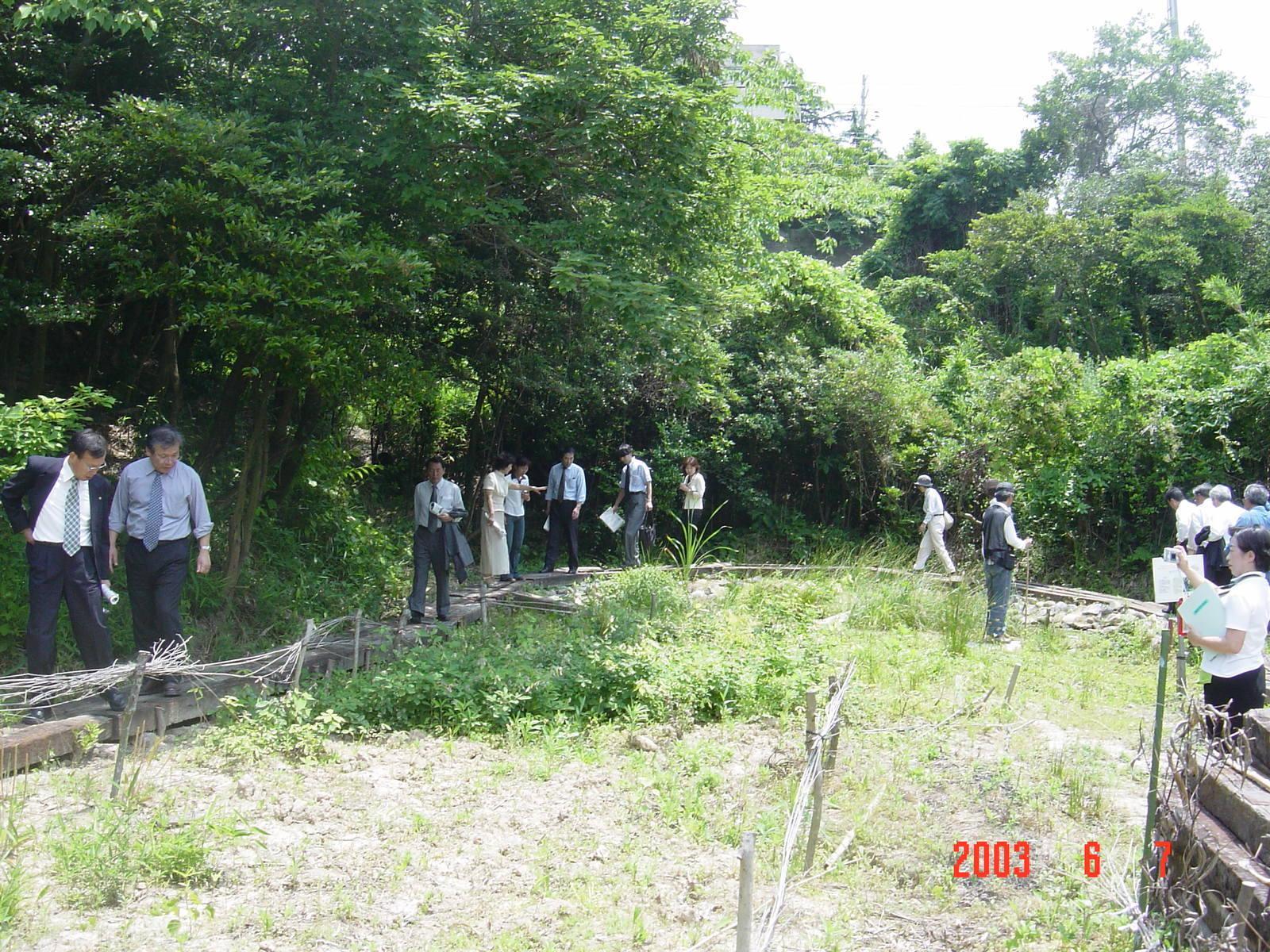 うみべの森の歴史⑬「2003年6月の活動」_c0108460_12110208.jpg