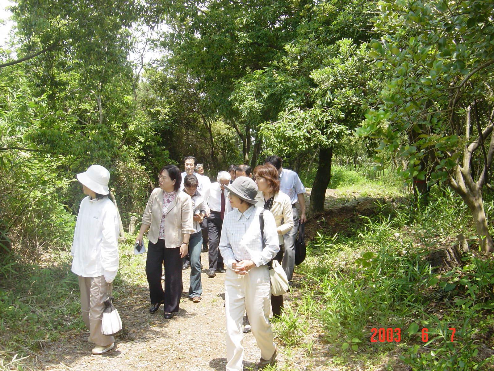 うみべの森の歴史⑬「2003年6月の活動」_c0108460_12110373.jpg