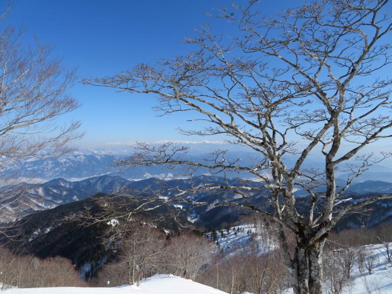 快晴の 猪臥山 (1,518.8M)    下山 編_d0170615_21551026.jpg