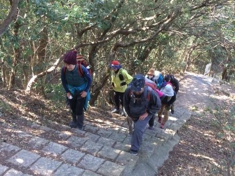 冬枯れの里山トレッキング 名谷~奥須磨公園~板宿」_c0218841_09595209.jpg