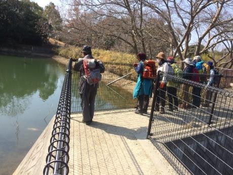 冬枯れの里山トレッキング 名谷~奥須磨公園~板宿」_c0218841_10001812.jpg