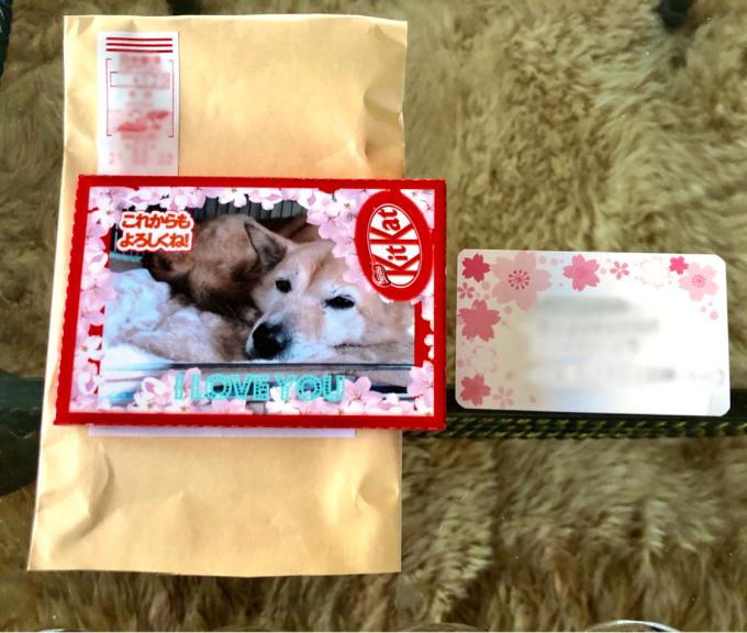 クリスマスローズの赤ちゃんがいっぱい♡と素敵なキットカット♫_a0396654_22421080.jpg