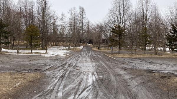 春と冬のおいかけっこ - 今日のフィールド状況_b0174425_15145569.jpg