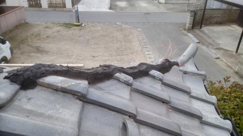 甲府市 シルバーの屋根 其のニ_b0242734_21253433.jpg