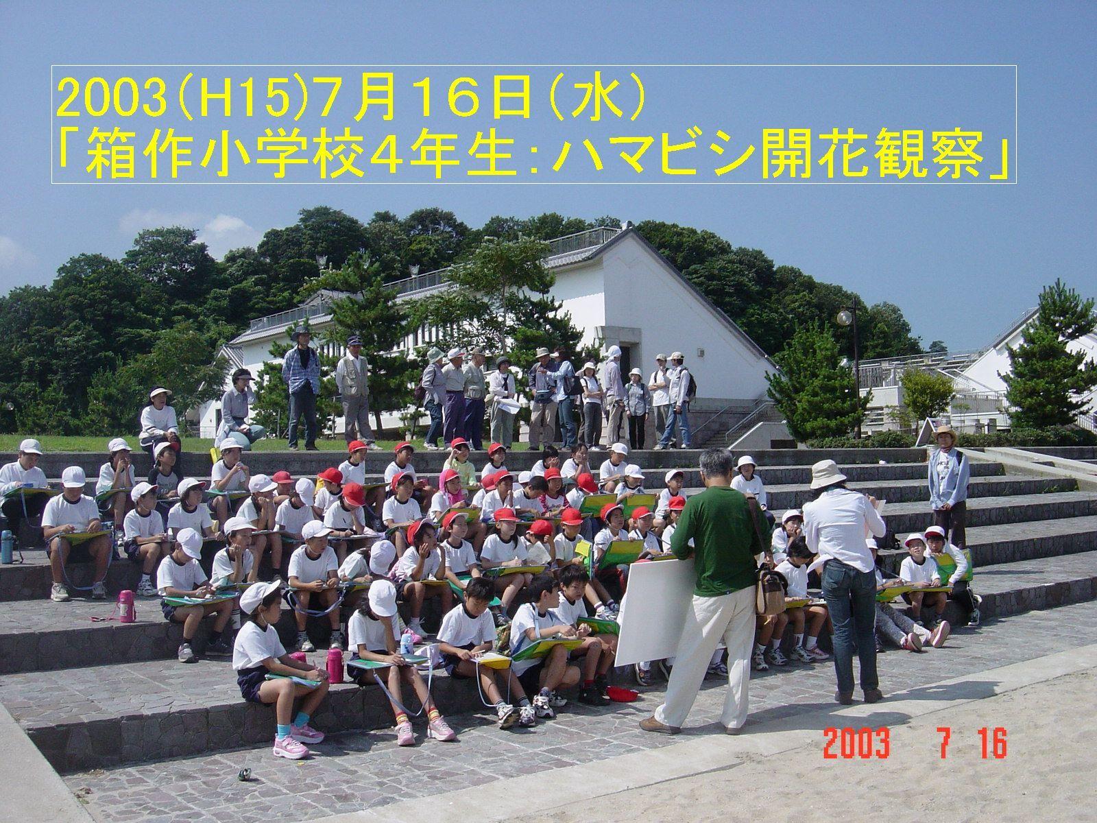 うみべの森の歴史⑭「2003年7月の活動」_c0108460_12311562.jpg